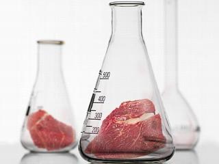 laboratory meat