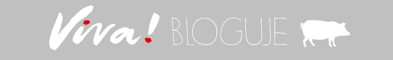 Fundacja Viva! bloguje