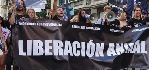 Manifestacja ulicami Barcelony
